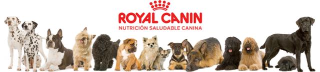 Royal Canin Gastro Intestinal в Украине. Сравнить цены